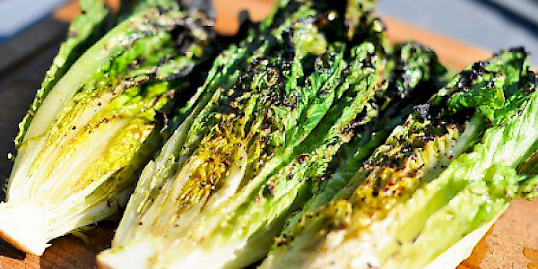 Grilled Pacific Hearts of Romaine with Garlic Salad Dressing